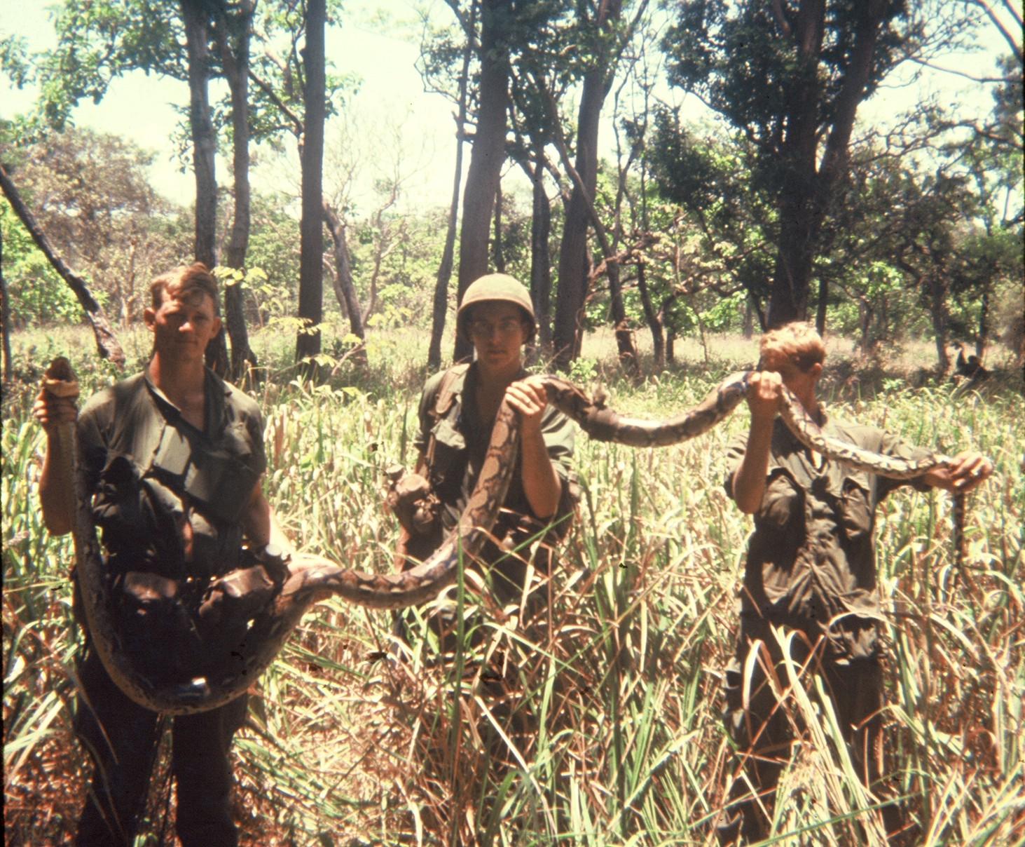 Vietnam War Snakes 3