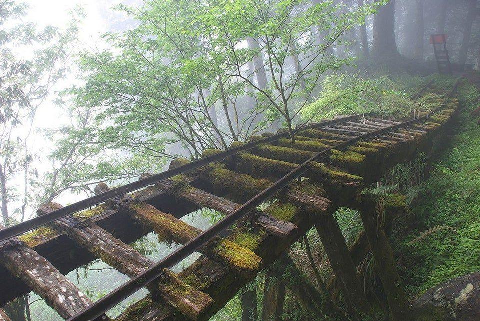 Rail Bridge in Taiwan