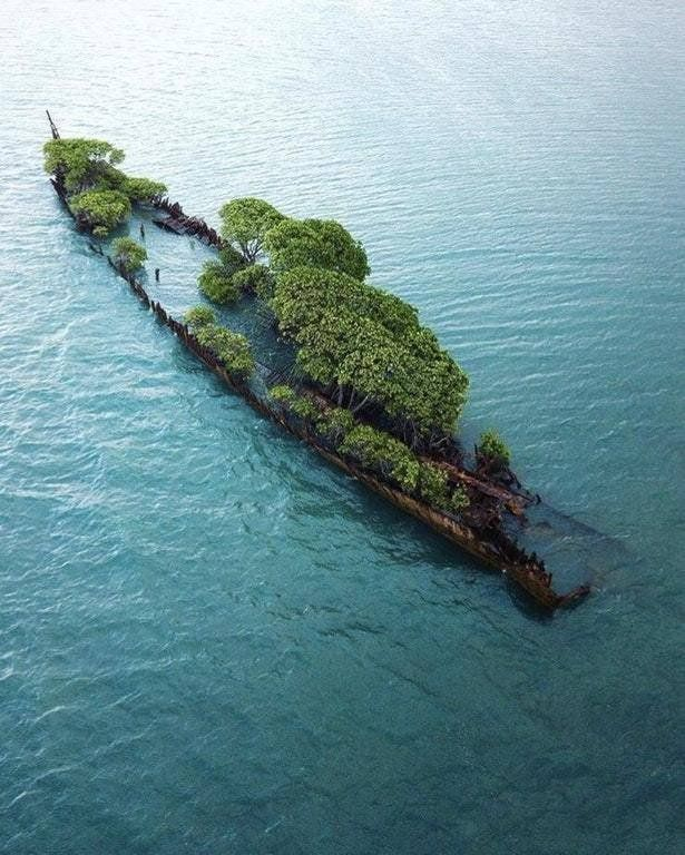 Wrecked SS City of Adelaide