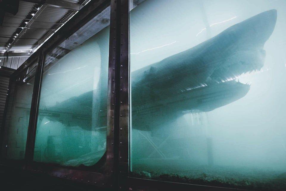 abandoned aquarium in Melbourne