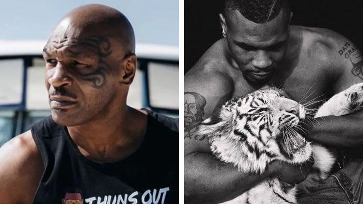 Mike Tyson s  70 000 Bengal Tigers3