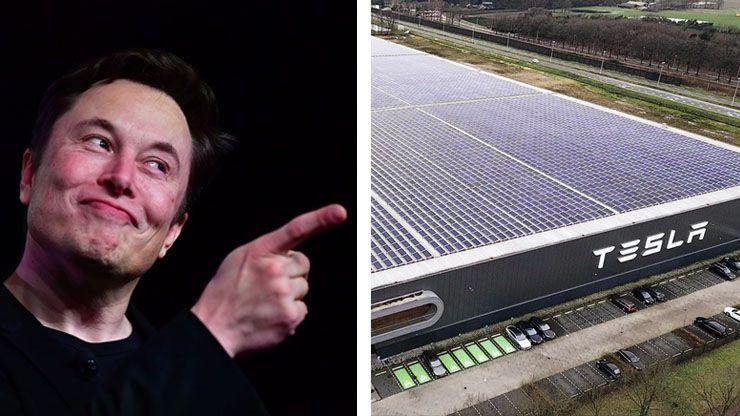 Elon Musk s Income